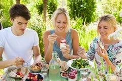 野餐乐趣 免版税库存图片