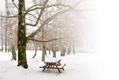 野餐冬天 免版税库存图片