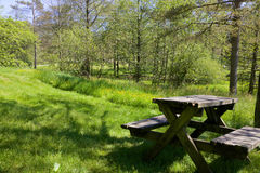 野餐区在公园01 免版税库存照片