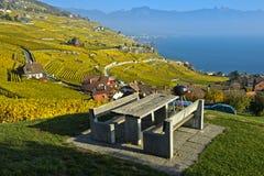 野餐区在lavaux葡萄园里,拉沃葡萄园梯田,沃州,瑞士 免版税库存图片