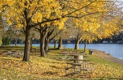野餐区蓝色湖公园俄勒冈。 图库摄影