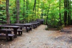 野餐和休息表和长凳在森林里 图库摄影
