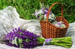 去野餐在一个土气样式的一个草甸 篮子与 免版税库存照片