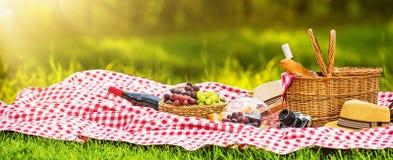 野餐在一个晴天 免版税库存图片