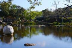 野餐在公园自然全景湖 免版税库存照片