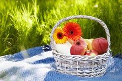 野餐在庭院里。花和果子。 免版税库存照片