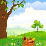 野餐在森林 免版税库存照片