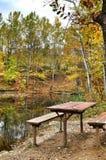 去野餐在秋季森林湖岸  免版税图库摄影