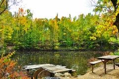 去野餐在秋季森林湖岸  图库摄影
