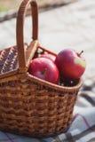 野餐在草甸 红色苹果篮子 免版税库存照片