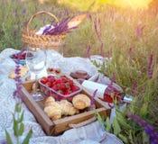 野餐在草甸 免版税库存图片