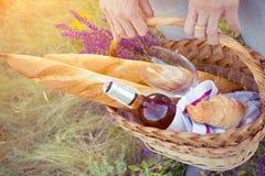野餐在草甸 免版税库存照片