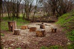 野餐地方whith树桩 库存图片