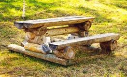 野餐安排在森林里 免版税图库摄影