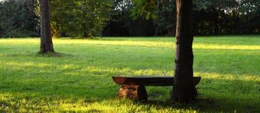野餐安排 图库摄影