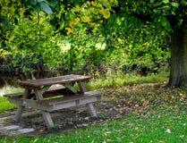 野餐就座 免版税库存照片