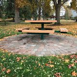 野餐桌和下落的叶子 免版税库存图片