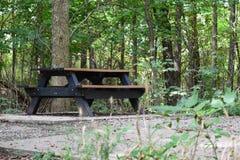 野餐桌在公园 免版税库存照片
