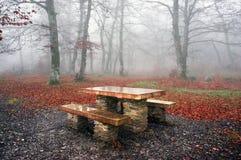 野餐桌在有薄雾的森林里 库存图片