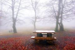 野餐桌在有雾的森林里 免版税库存图片