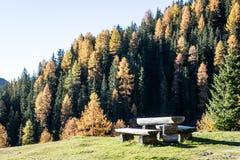 野餐桌 库存图片