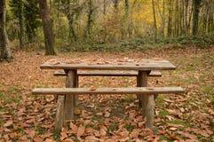 野餐桌int他森林 免版税库存图片