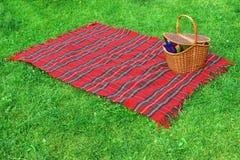 野餐毯子和篮子在草坪 免版税库存图片