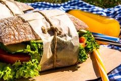 野餐用自创三明治 库存照片