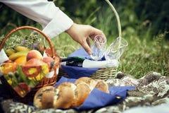 去野餐用香槟,在草的果子 免版税库存图片