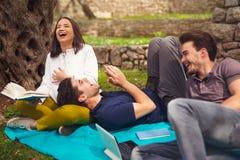 野餐的三青年人在橄榄树下 免版税库存图片