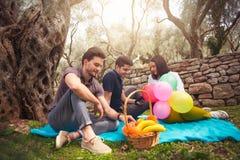 野餐的三青年人坐毯子在橄榄下 库存图片