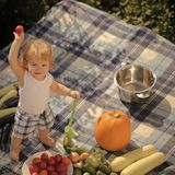 野餐的小男孩 免版税图库摄影
