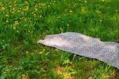 野餐的格子花呢披肩在绿草 库存图片