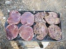野餐的烤肉 图库摄影