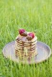 野餐的草莓薄煎饼在草垂直 免版税库存照片