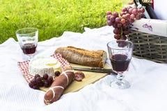 野餐篮子、蒜味咸腊肠、乳酪、长方形宝石、酒和葡萄在毯子 免版税库存图片