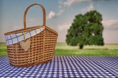 野餐篮子在蓝色方格的桌布和夏天Landsc 库存照片
