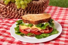 野餐篮子敬酒了火腿和乳酪三明治 免版税图库摄影