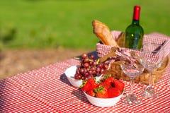 野餐篮子方格用桌布酒,长方形宝石,草莓,玻璃,横幅 库存照片