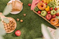 野餐篮子用果子和书在草背景 免版税库存照片