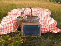 野餐篮子红色方格的布料 免版税库存图片