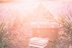 野餐篮子,在落日的光芒的下旧书 在日落的浪漫野餐概念在芬芳淡紫色 库存照片
