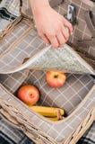 野餐篮子 库存图片