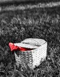 野餐篮子 库存照片