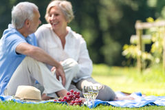 去野餐资深的夫妇户外微笑 免版税库存图片