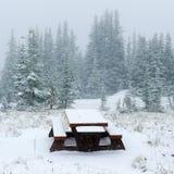 野餐长凳在冬天 免版税库存图片