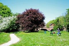 野餐长凳在草甸,在特伦特的伯顿 库存照片