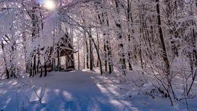 野餐风雨棚在用雪盖的森林里 库存图片