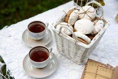 野餐-茶和曲奇饼 库存照片