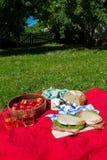 野餐 库存图片